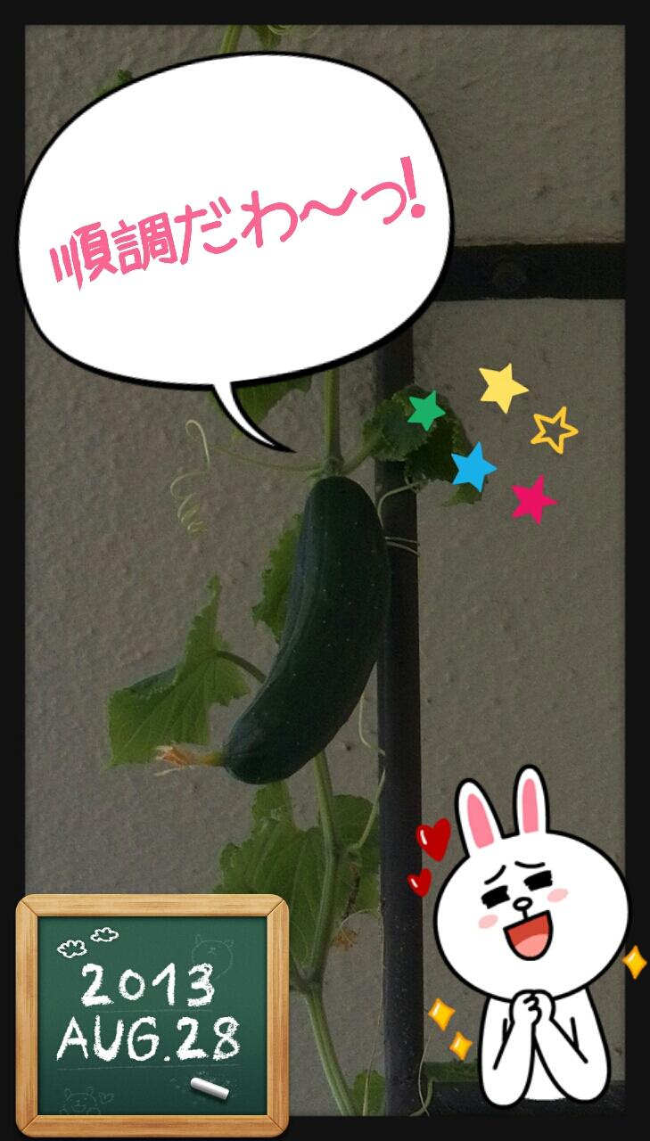 Linecamera_share_20130829163905